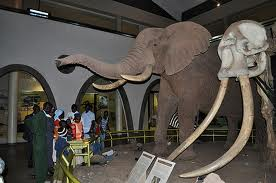 National Museum of Kenya National Museum of Kenya an exciting adventure of the Kenyan Heritage